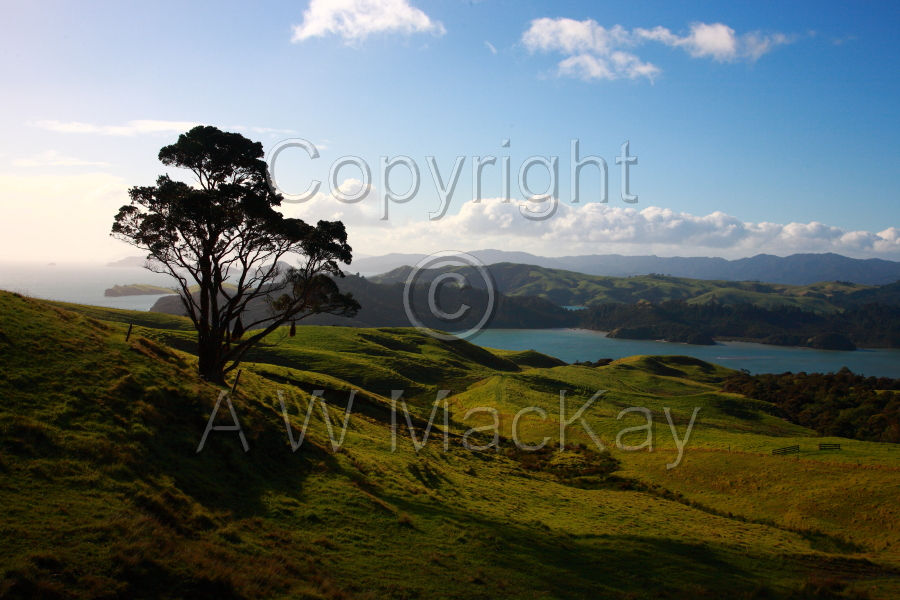 Kereta Hills and Manaia Harbour - Coromandel Peninsula
