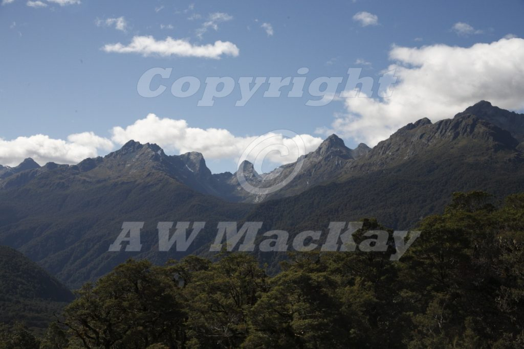 The Hollyford Valley Fiordland New Zealand