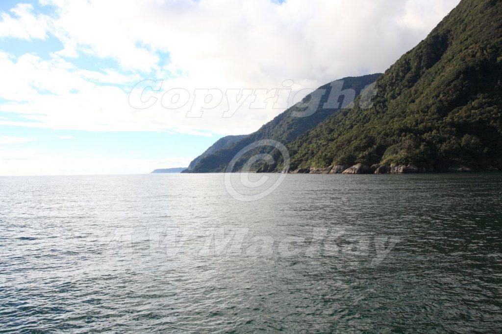 Fiordland Coastline New Zealand