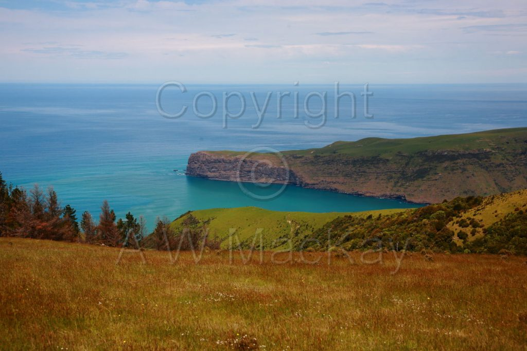 Timutimu Head - Akaroa Canterbury New Zealand