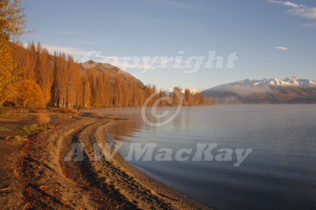 Roy's Bay - Wanaka