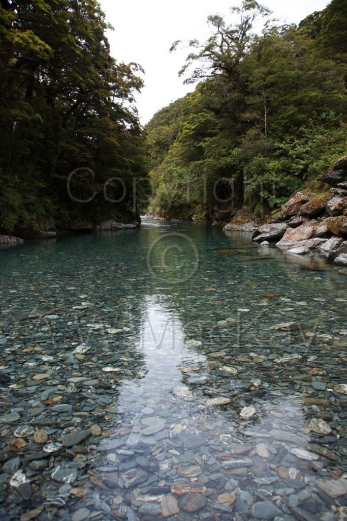 Haast River Pool II - SH 6 - South-Westland - South Island
